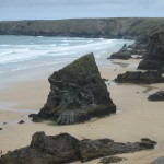 Wild Cornwall